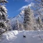 Hinterthal – Wanderweg an der Urslau
